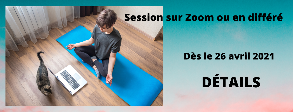 Session sur Zoom