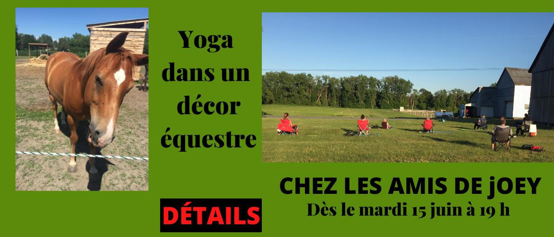 Cours de yoga thérapeutique/méditation dans un décor équestre